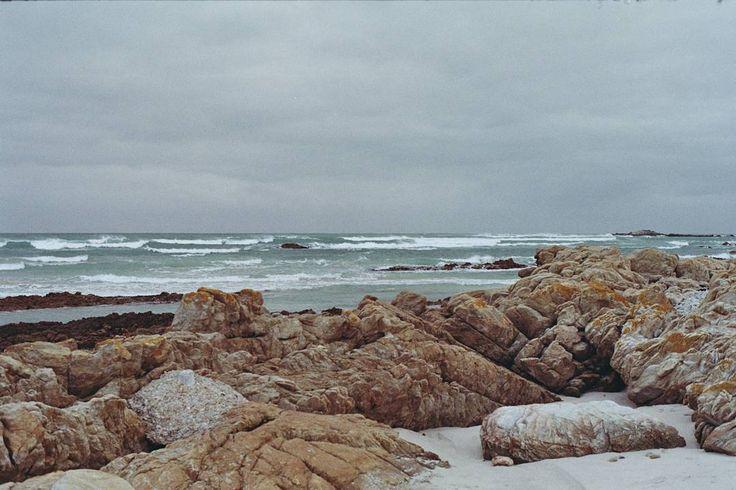 Pentax Spotmatic Kodak Colour Plus 200. #film #shootfilm #pentax #spotmatic #35mm #goodweatherforducks #sea #ocean #view #happyplace