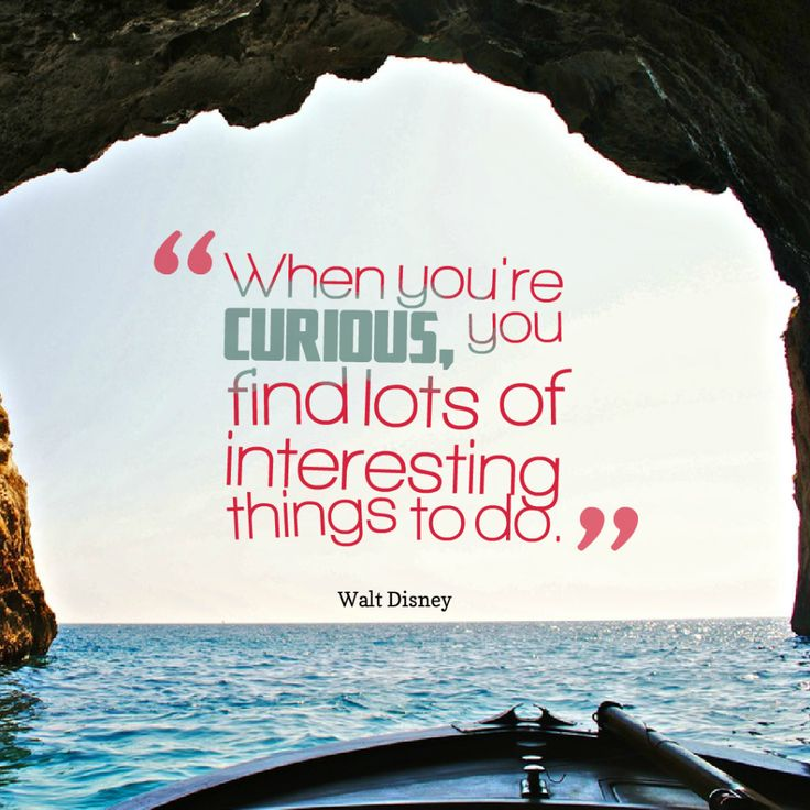 Today Quote: When you're curious, you find lots of interesting things to do.