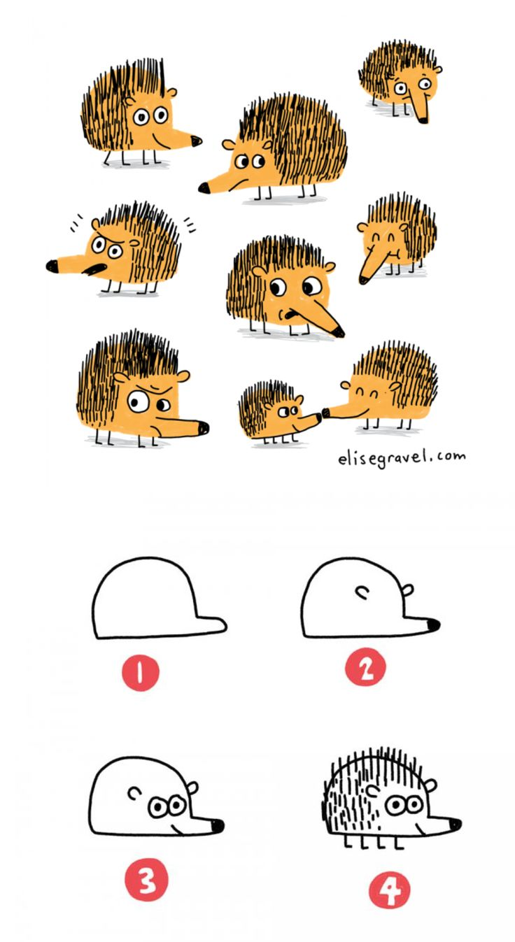 Elise Gravel Illustration • tutorial • drawing • hedgehog • dessiner • hérisson • mignon • cute • hot to • DIY • kids • enfant • art • dessin