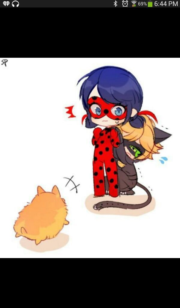 chat noir x reader  your bedroom  miraculous ladybug