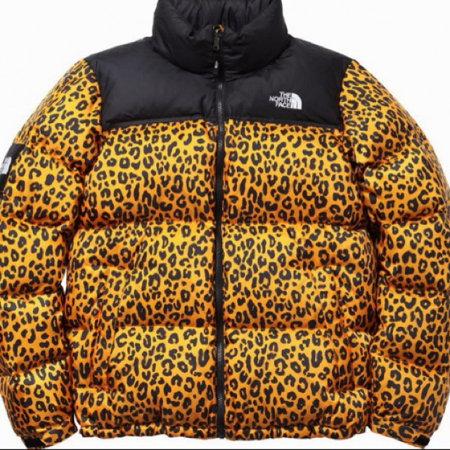 If i would ever consider wearing these weird winter jacket that would be thia Supreme x North Face Nuptse!!