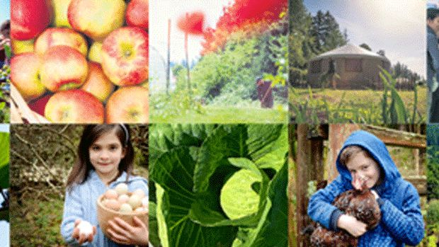 National Organic Week, held from September 19-27,celebrates a community that strives to provide healthy, toxin-free products while creating sustainable ecosystems and food security for future generations.