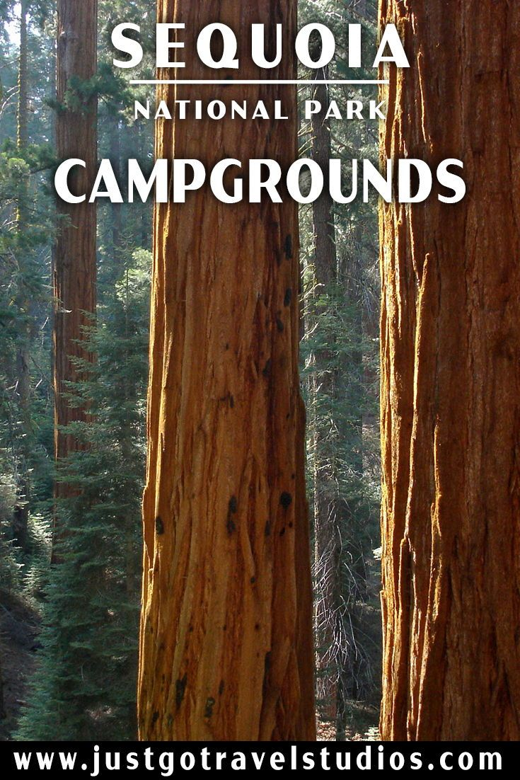 Just Go to Sequoia National Park – Campgrounds