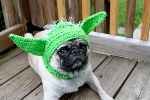 Dog Hat  Yoda / Made To Order by Sweethoots on Etsy, $16.00