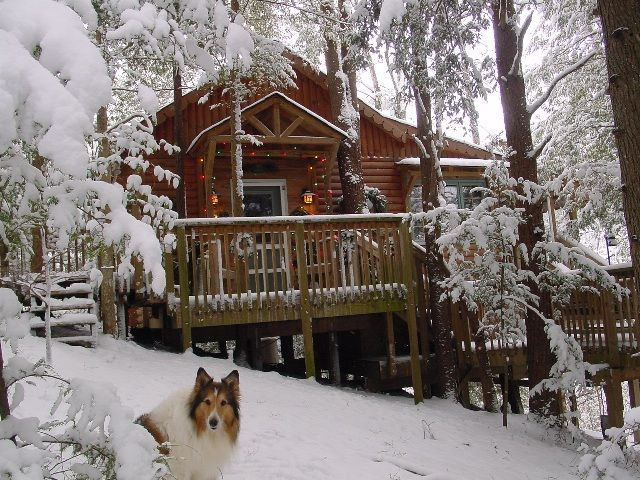 Honeymoon Cabins In Tennessee. Romantic And Secluded Gatlinburg And Pigeon  Forge Honeymoon Cabins