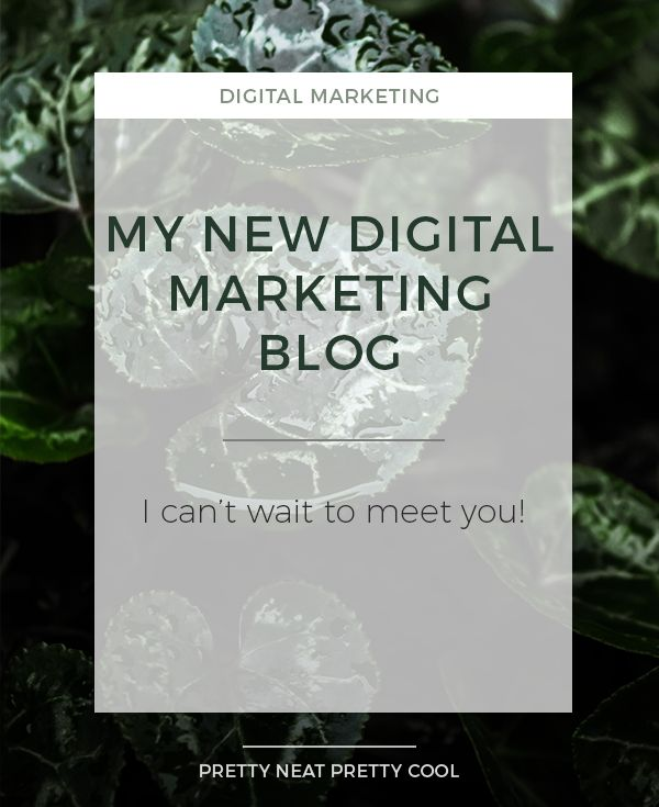 Welcome to the new and improved Pretty Neat Pretty Cool! Learn all about the blog and what to expect in this first post.
