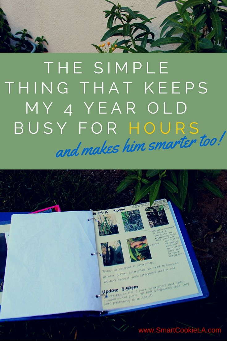 What is the simple thing that keeps my 4 year old busy for hours? And makes him smarter too? Read why my 4 year old is carrying this binder everywhere he goes, and why I'll make sure he uses it for years to come. www.SmartCookieLA.com/blog