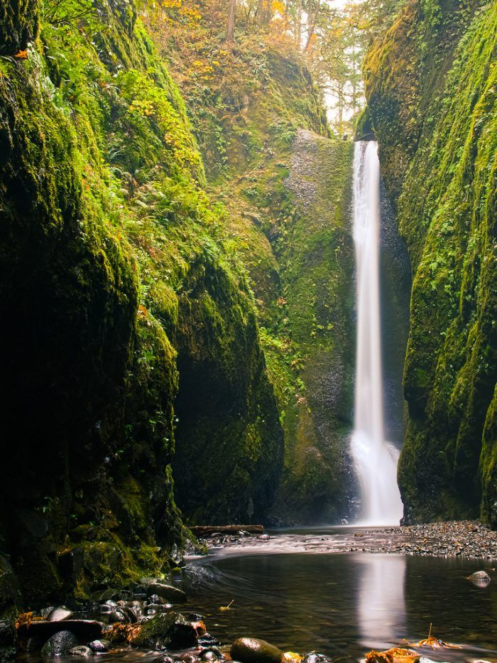 One of the most incredible hidden gems in Oregon is tucked away in the Columbia River Gorge. This amazing 1-mile hike will lead you through a breathtaking moss-covered canyon all the way to a majestic, secluded Oneonta Falls.