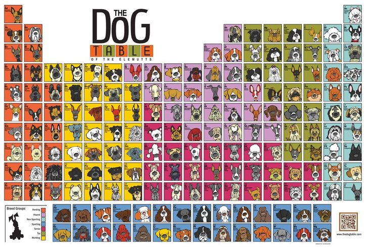 """The """"Original"""" Dog Table Poster"""