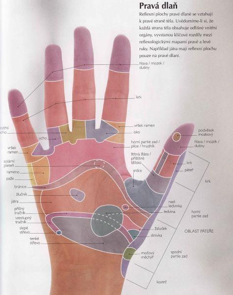 energie pro naše tělo a duši | Reflexní terapie
