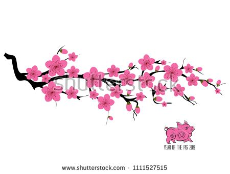 japan cherry blossom branching tree vector illustration japanese invitation card with asian blossoming plum branch