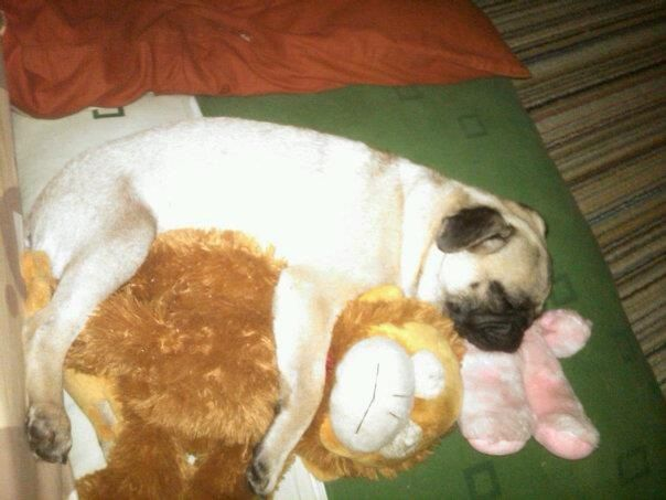 Moci wif her doll