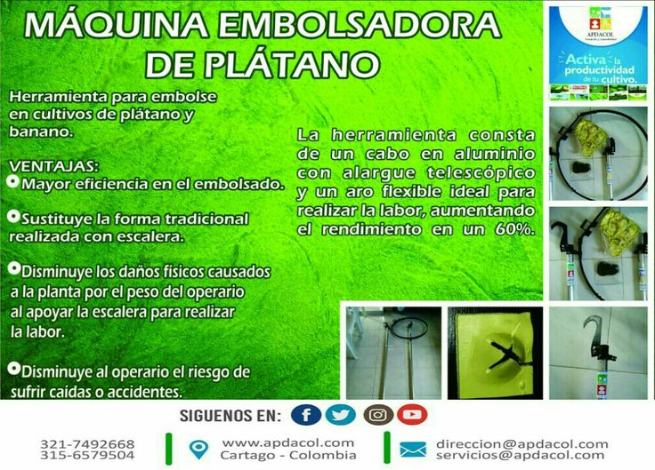 Maquina Embolsadora, Deshojadora, Desmanadora, Gurbias entre otros son los implementos que en Apdacol fabricamos para el sector agricola. CONTACTO DIRECTO. En Colombia somos los pioneros en estas herramientas. Envios a todo País.   A nuestros clientes les informamos en estos meses  se hicieron mejoras con el fin de aumentar la calidad y la funcionalidad de nuestros productos.  Comuníque con nosotros. SOMOS DESARROLLO Y SOSTENIBILIDAD.  www.apdacol.com #Apdacol.