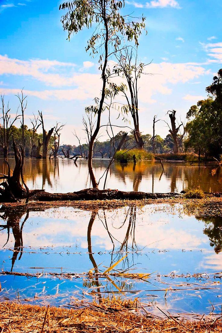 Murray River Mildura photo by Julian Paxton