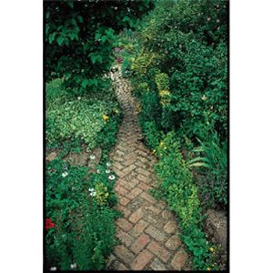 Herringbone brick garden path.