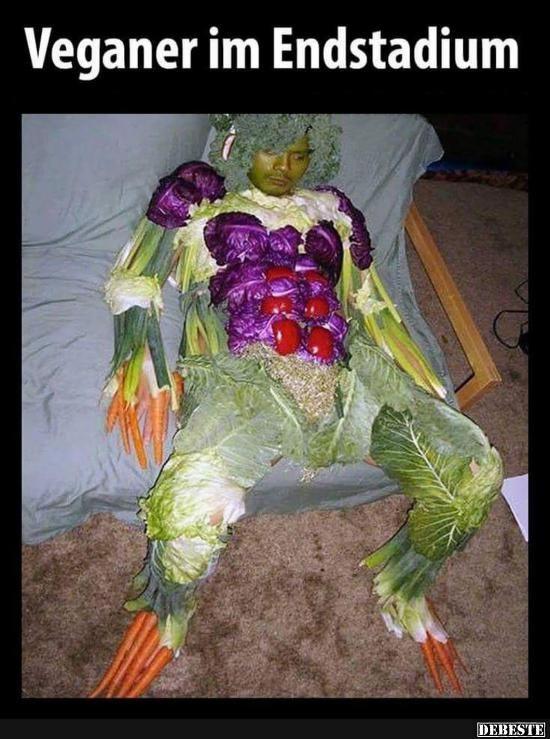 Veganer im Endstadium.. | Lustige Bilder, Sprüche, Witze, echt lustig