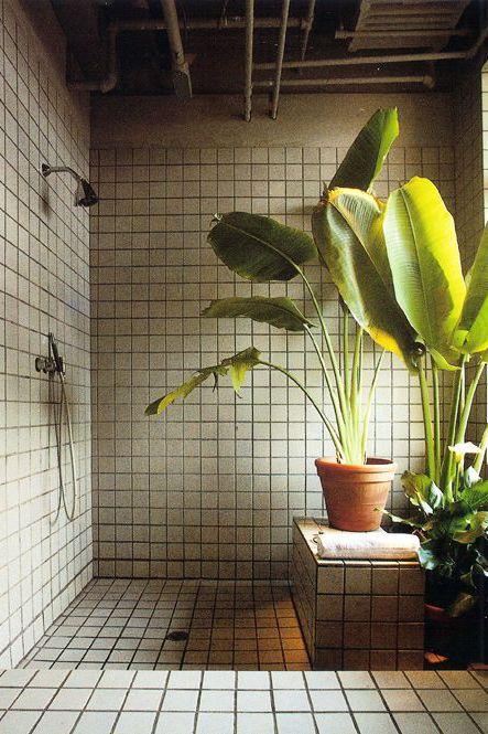 Badkamer met een tropisch tintje