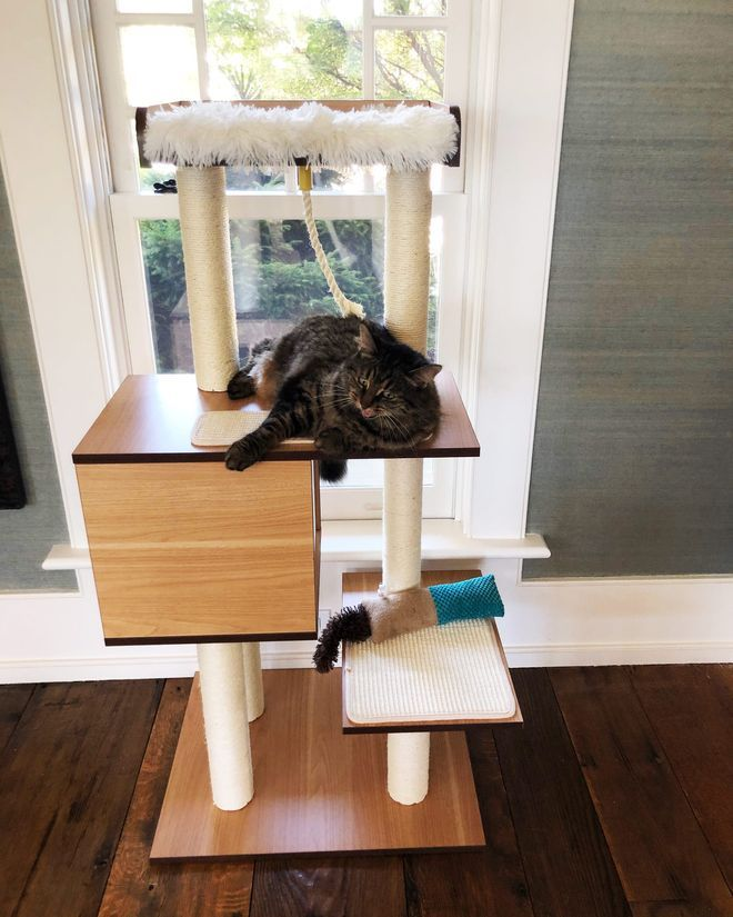 My Cat Likes This 70 Tree Almost As Much As Her 800 One Cat Tree Condo Modern Cat Tree Modern Cat