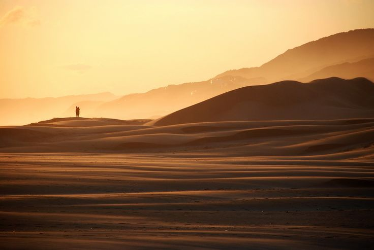 A walk on the dunes, Maitlands river mouth near Port Elizabeth, South Africa.