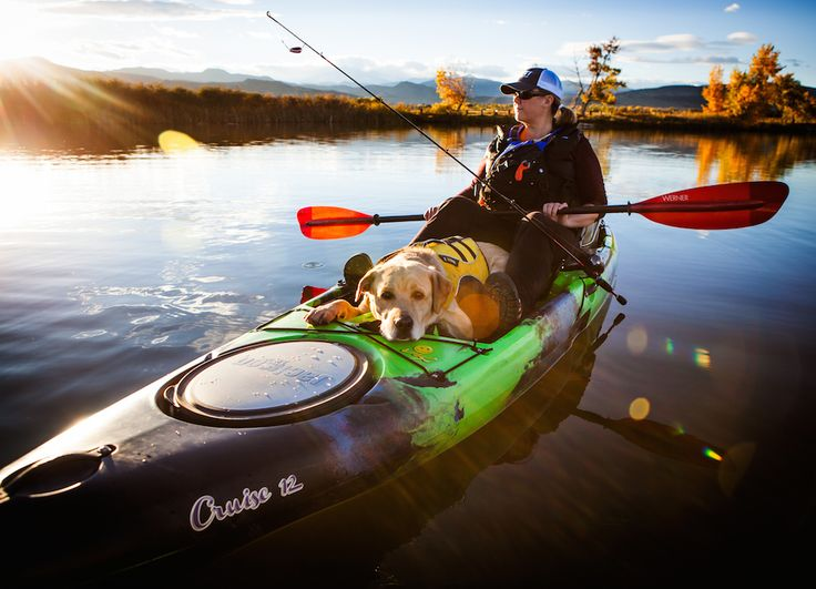 Canoe & Kayak give us tips on how to take our pups out on the water. Whether you adventure in a canoe, kayak or SUP, they've got 6 tips to help you out!!