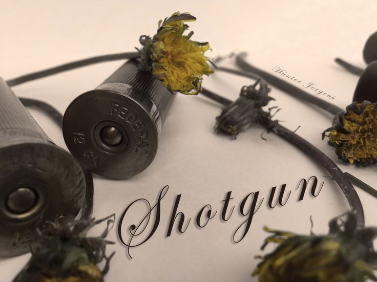 YOU ARE CORDIALLY INVITED to check out my new song, 'Shotgun'! Listen to it here: www.soundcloud.com/hunterjergens/shotgun
