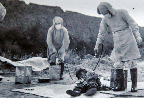 Tífusszal befecskendezett zsemlék, pestises gabonával ellátott lakosság és kolerával fertőzött kutyák. A kínai nép a második világháború során efféle borzalmak sorozatát élte át. A japán hadsereg már a Nanking elfoglalásakor véghezvitt könyörtelen mészárlással jelezte, hogy nem ismer kegyelmet.