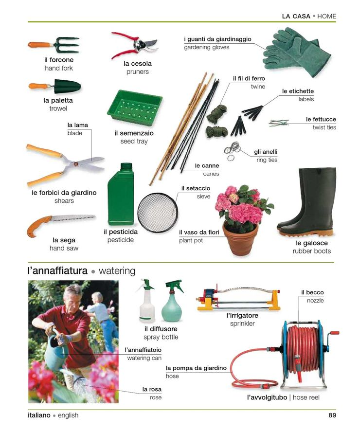 Learning the italian language - Garden Tools