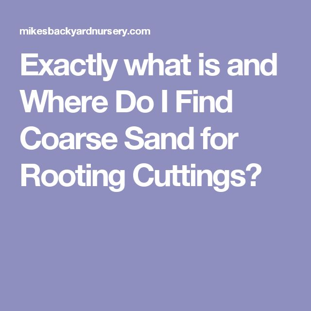 Exactly what is and Where Do I Find Coarse Sand for Rooting Cuttings?