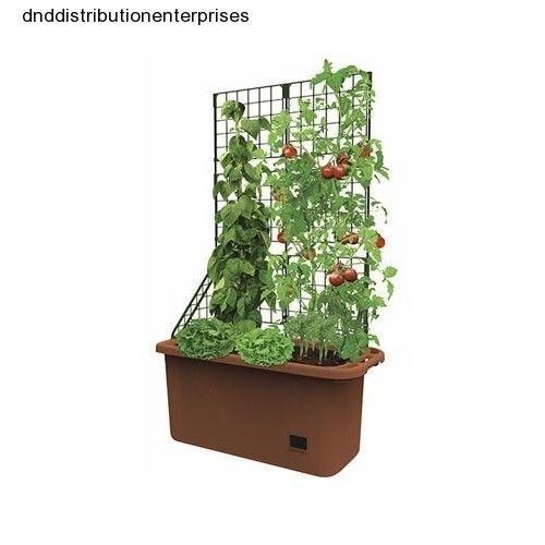 Large Redwood Planter Box For Tomatoes: 12 Best Votre Petit Potager Urbain Images On Pinterest
