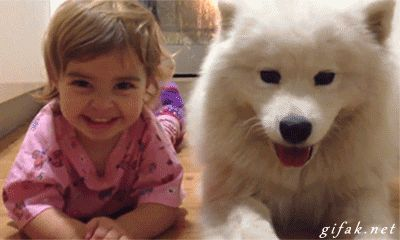 Even better when they are best friends FOREVER, like these two.   26 Things That Will Turn Your Bad Day Around In An Instant