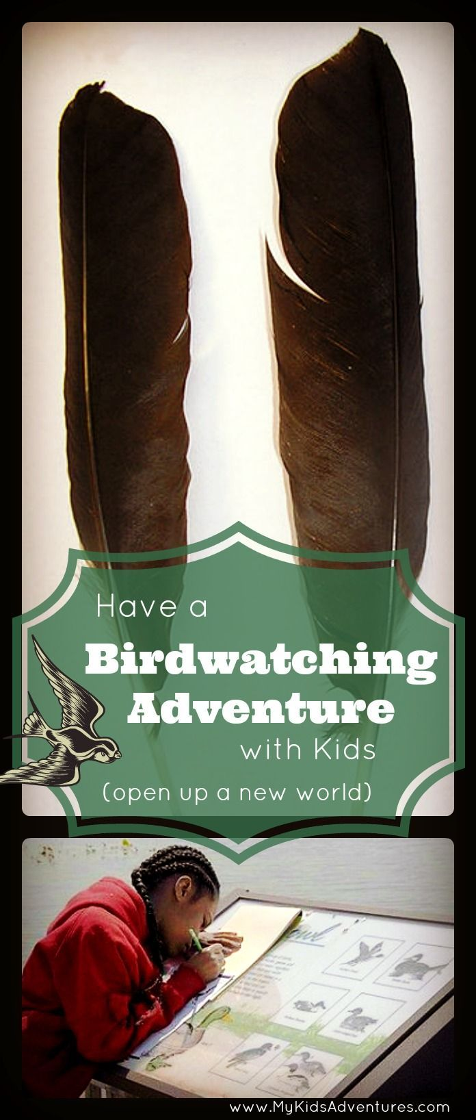 Learn how to have a birdwatching adventure with your kids from your own backyard and how to make the experience last long after the birds have flown away.