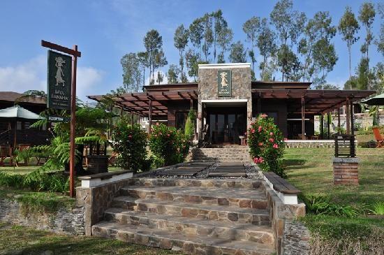 hotel in bromo mountain #bromohotel #hotelinbromo