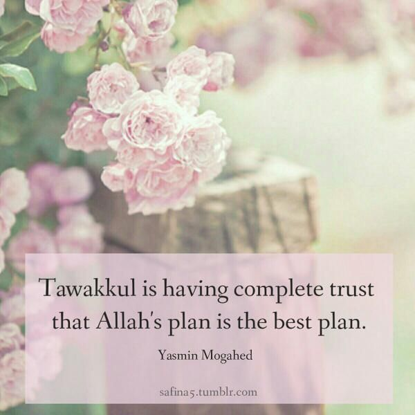 Allah's plan is the best plan. Alhamdulillah