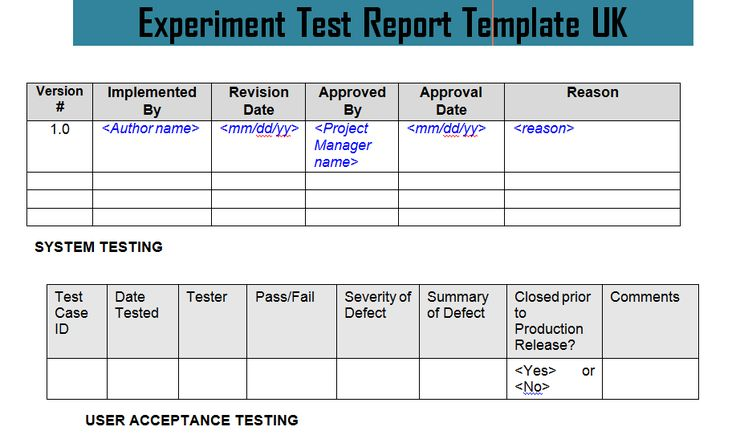 Experiment Test Report Template Uk Doc  Project Management