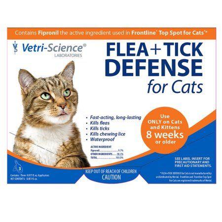Pets Flea Tick Ticks Fleas