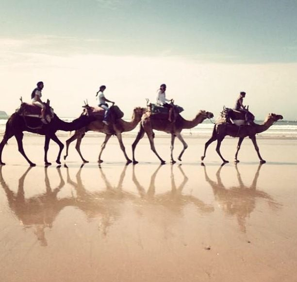 Essaouira, Morocco — by Marie Muratori. This photo was taken on the beach of Essaouira and this is an incredible memorie ! During the same trip we also...