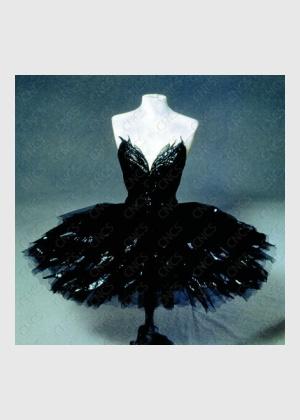 Lac des cygnes costume cygne noir magnifique