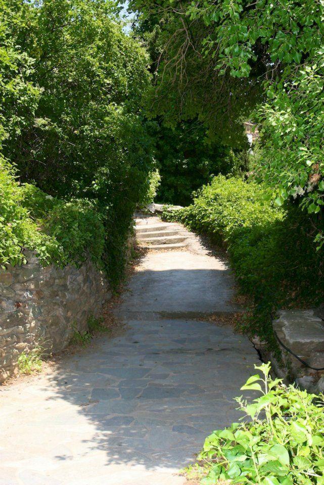 A path in Piso Vrisi of Batsi