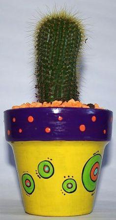 Cactus En Macetas Pintadas A Mano