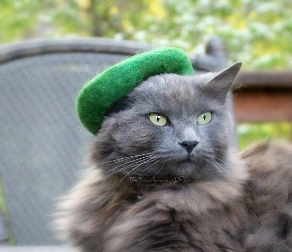 Cat Green Beret - Scottish Hat for cats - Girl Scouts of ...