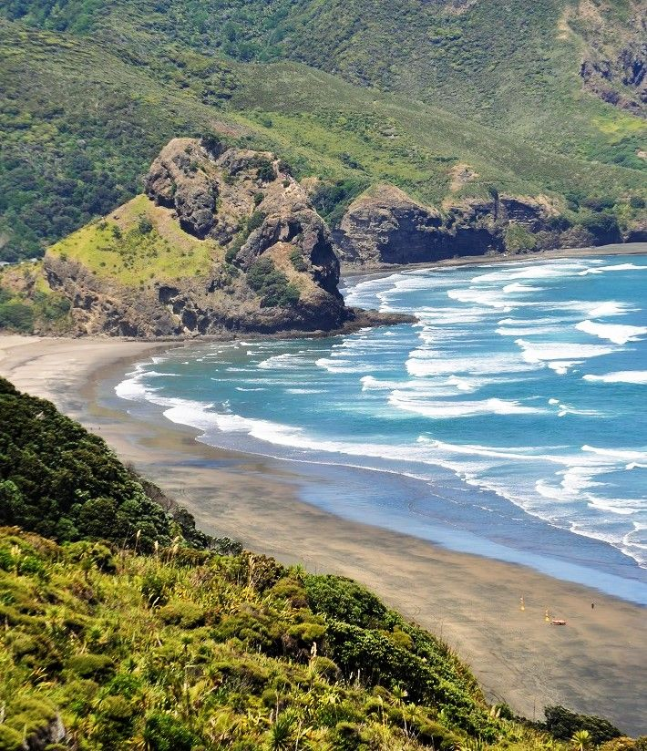 Lion Rock and North Piha from White's beach hilltop