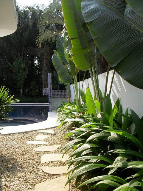 Arvore do viajante,heliconias e curculigo  Gardens of my Life: Casa de Praia - Paisagismo por Yuka Kussano