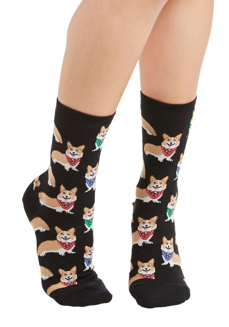 Corgi, Fi, Fo, Fum Socks - Black, Multi, Print with Animals, Darling, Critters, Knit, Casual