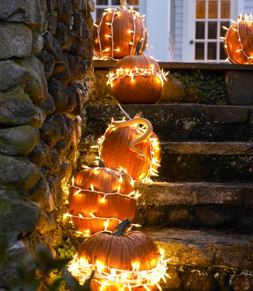 Easy Pumpkin Decorating Ideas –  Except for the snake...