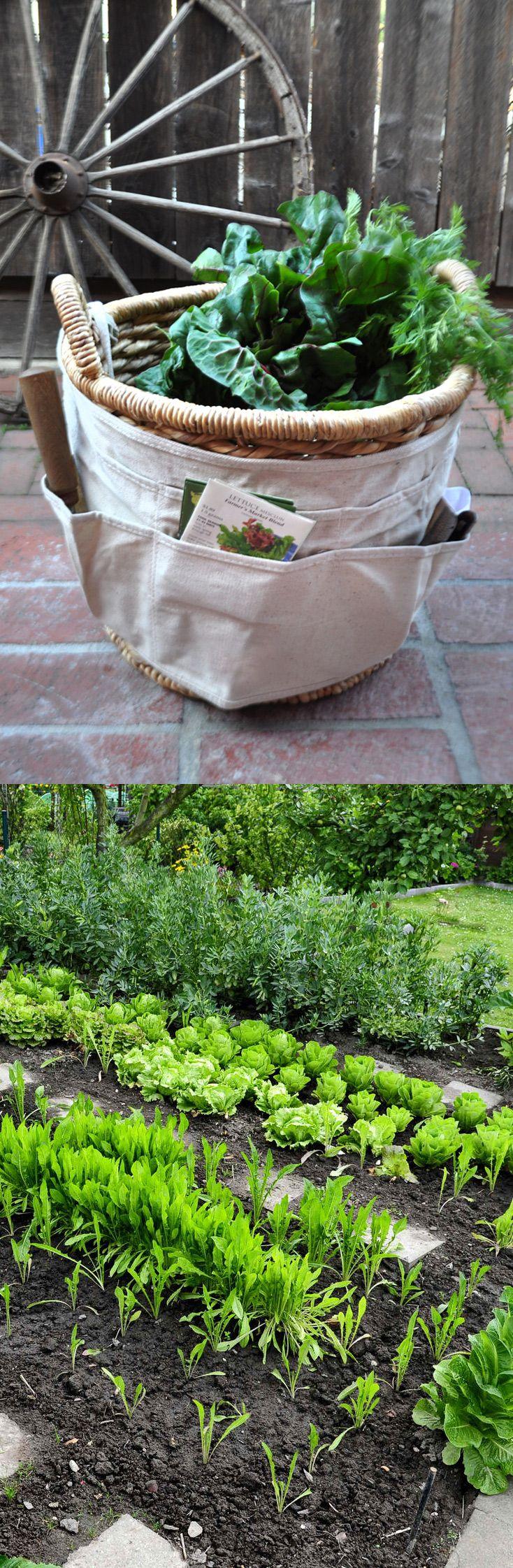 Diy Garden Projects 46 Best Garden Diy Ideas Images On Pinterest