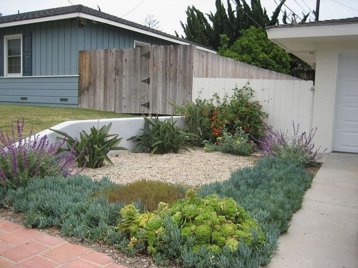 47+ Drought free landscaping ideas ideas