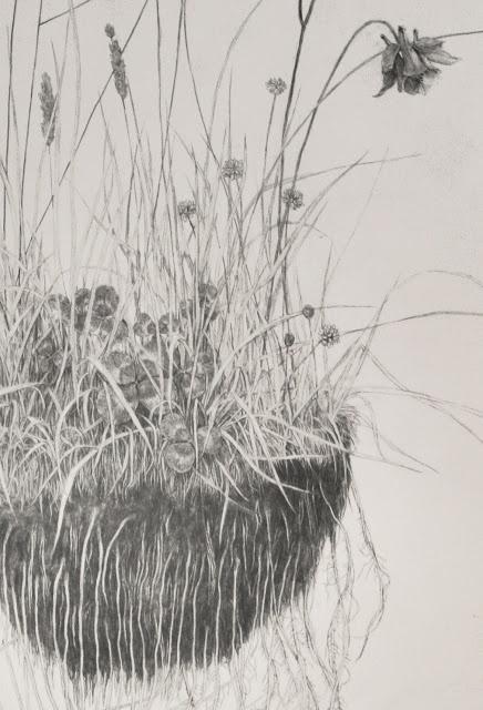 drawing by  Ki Yoong