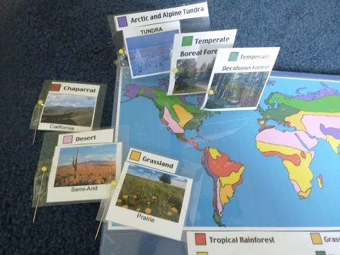 World Biomes pin map