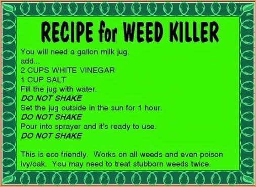 One more use for vinegar