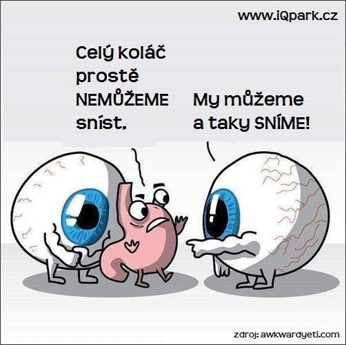 Máš zase velké oči!